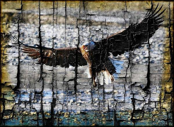 Bald Eagle Poster featuring the digital art Eagle Imprint by Carrie OBrien Sibley
