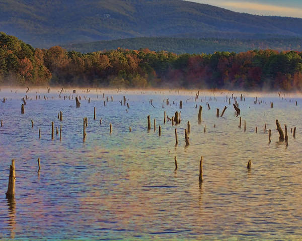 Lake Wilhelmina Poster featuring the photograph Early Morning Color Of Lake Wilhelmina-arkansas by Douglas Barnard