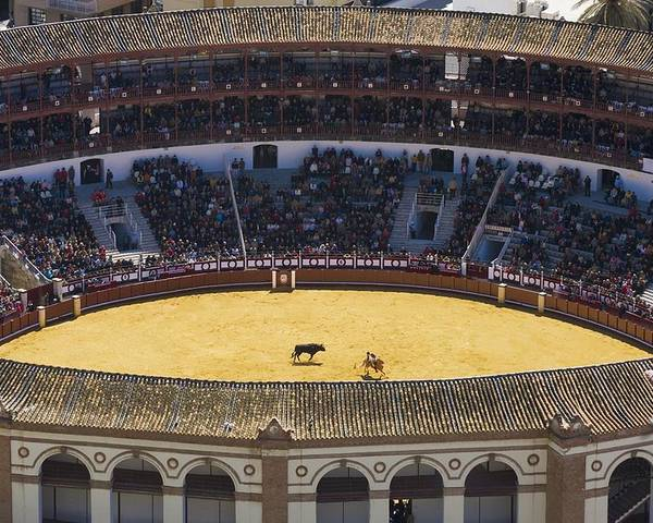 Outdoors Poster featuring the photograph Elevated View Of Bullring by Axiom Photographic