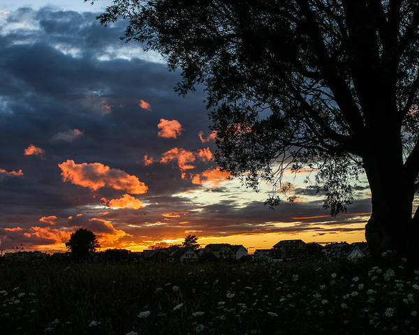 Sunset Poster featuring the photograph Evening by Beata Bienkowska