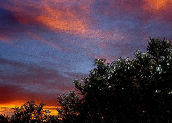 Palm Desert Poster featuring the photograph Evening Sky In Palm Desert California by Sherri's - Of Palm Springs