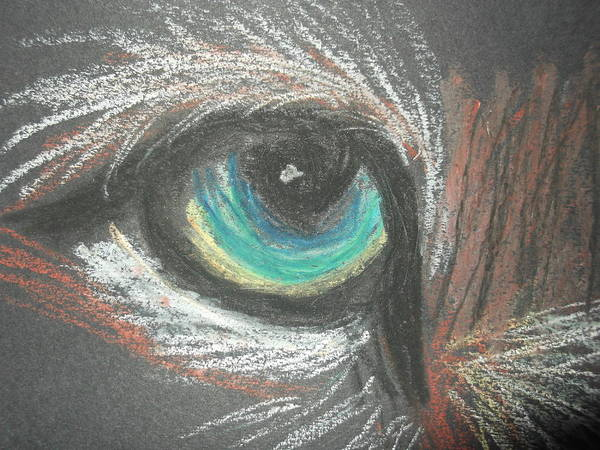 Eye Poster featuring the pastel eye by Sharon Tuff