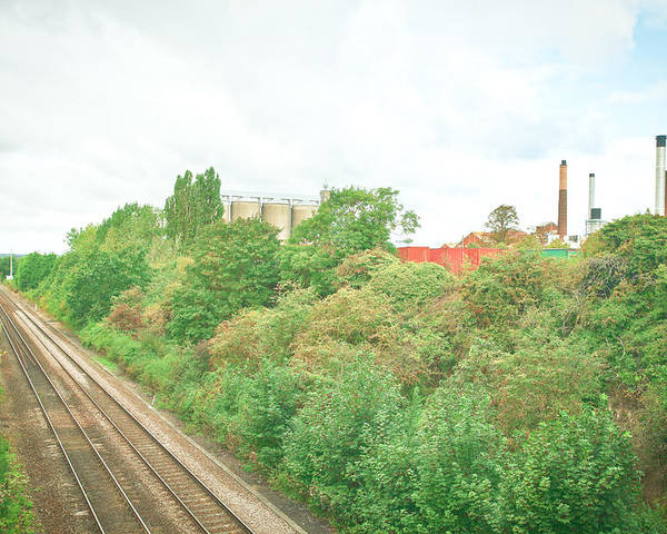 Blue Poster featuring the photograph Factory And Trainlines by Tom Gowanlock