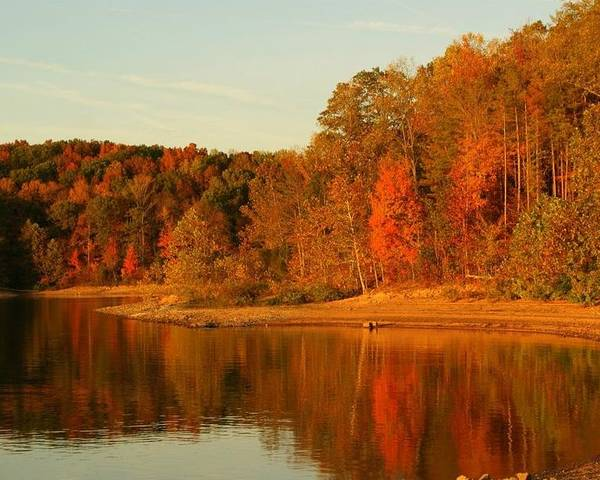 Patoka Lake Poster featuring the photograph Fall At Patoka by Brandi Allbright