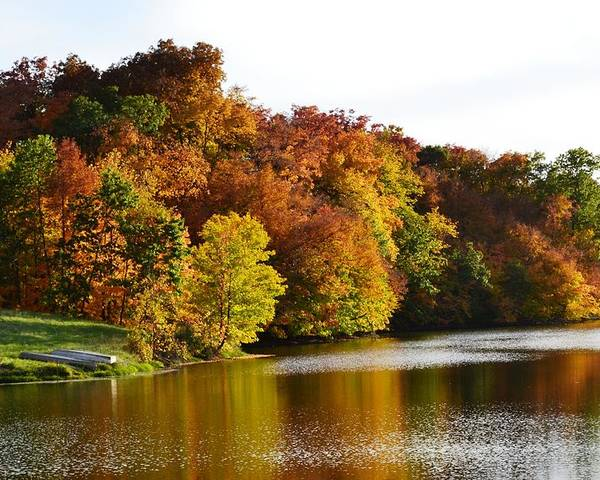 Gahn Wildlife Refuge Pond Poster featuring the photograph Fall On The Pond by Kim Hymes