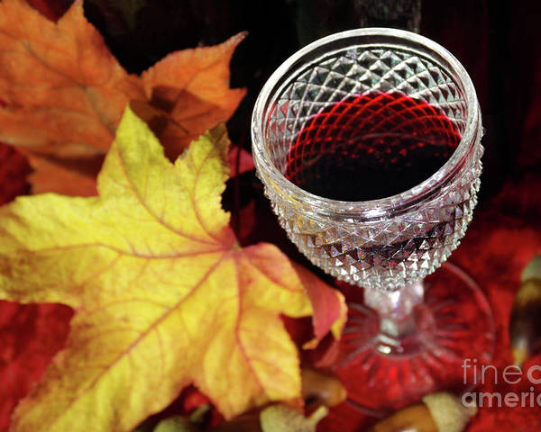Acorn Poster featuring the photograph Fall Red Wine by Carlos Caetano