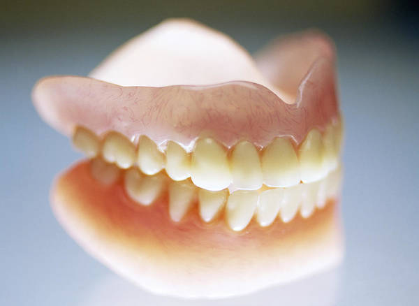False Teeth Poster featuring the photograph False Teeth by Lawrence Lawry