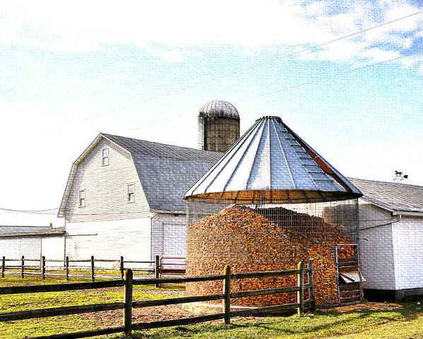 Farm Life Poster featuring the photograph Farm Life by Todd Hostetter