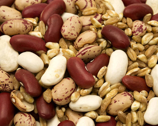 Macro Poster featuring the photograph Farro And Beans by Fabrizio Troiani