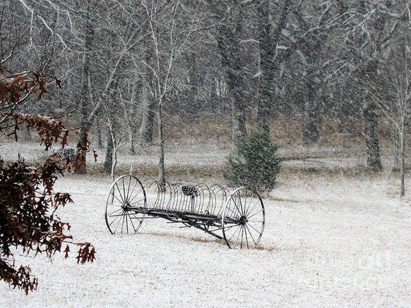 Old Rake Being Touched By The First Snow Fall. Poster featuring the photograph First Snow by Teresa Carvell