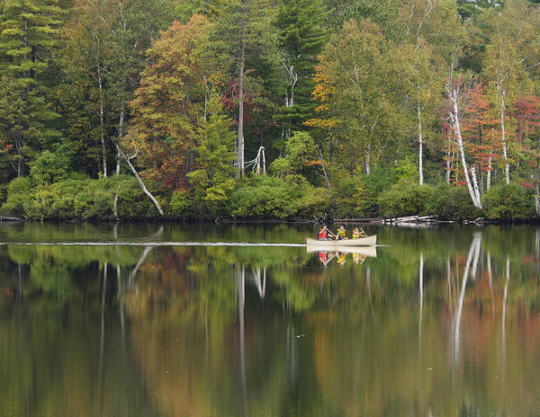 Canoe Poster featuring the photograph Fish Creek Pond In Adirondack Park - New York by Brendan Reals