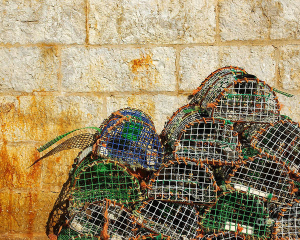 Bait Poster featuring the photograph Fishing Traps by Carlos Caetano