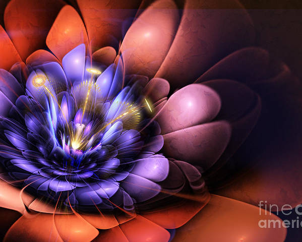 Flower Poster featuring the digital art Floral Flame by John Edwards