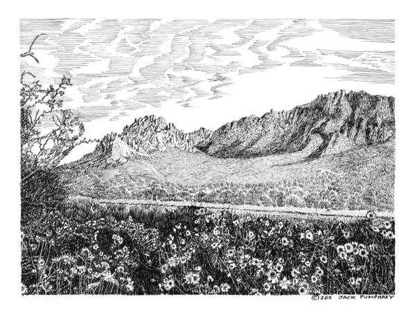 Framed Prints And Note Cards Of Ink Drawings Of Scenic Southern New Mexico. Framed Canvas Prints Of Pen And Ink Images Of Southern New Mexico. Black And White Art Of Southern New Mexico Poster featuring the drawing Florida Mountains And Poppies by Jack Pumphrey
