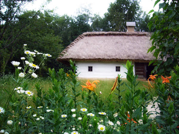 Rural Poster featuring the pyrography Flowers Near Rural House by Aleksandr Volkov