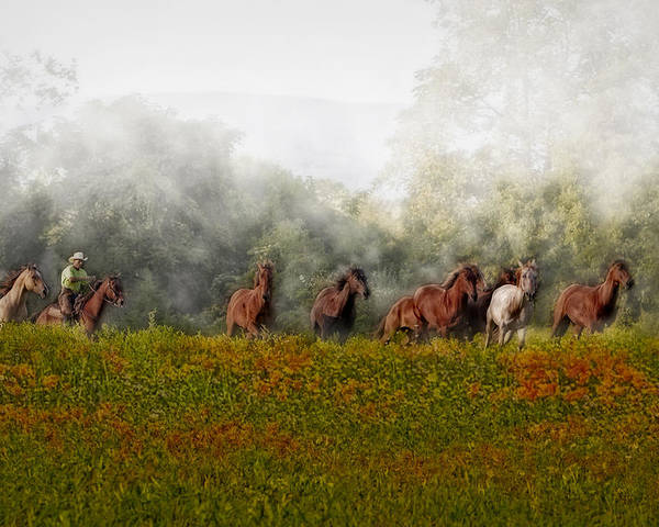 Equestrian Poster featuring the photograph Foggy Morning by Susan Candelario