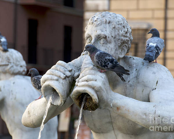 Works Poster featuring the photograph Fontana Del Moro In Piazza Navona. Rome by Bernard Jaubert