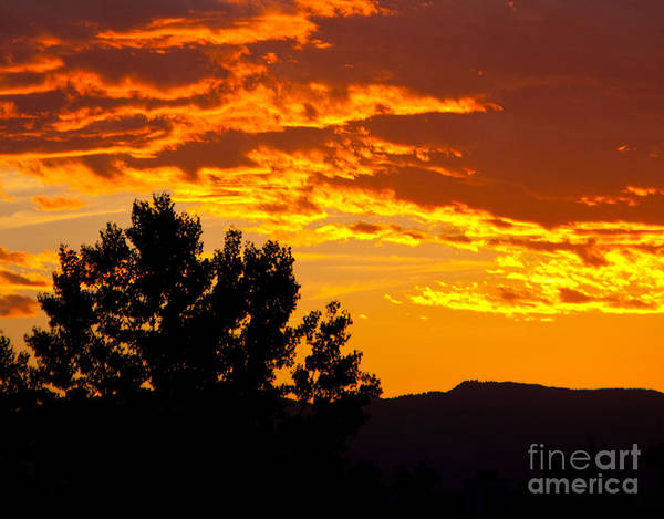 Sunset Poster featuring the photograph Friday Night Lights by Dana Kern