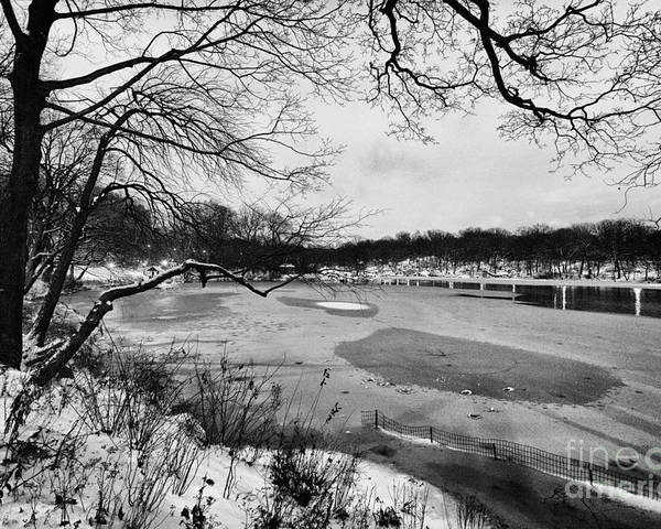 Cold Poster featuring the photograph Frozen Central Park At Dusk by John Farnan