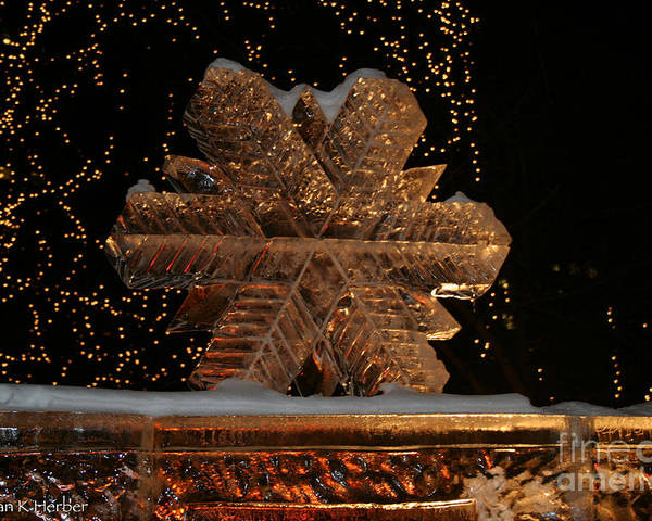 Ice Sculpture Poster featuring the photograph Frozen Flake by Susan Herber