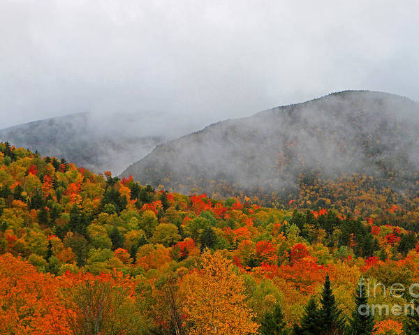 Fall Poster featuring the photograph Fruits Loops In Crawford Notch by Lloyd Alexander