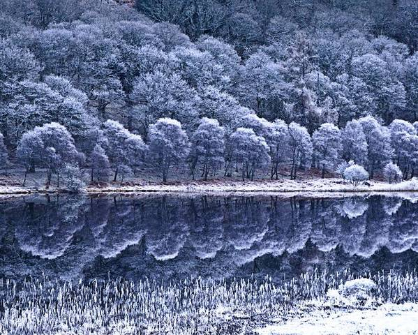 Frost Poster featuring the photograph Glendalough National Park, County by Richard Cummins
