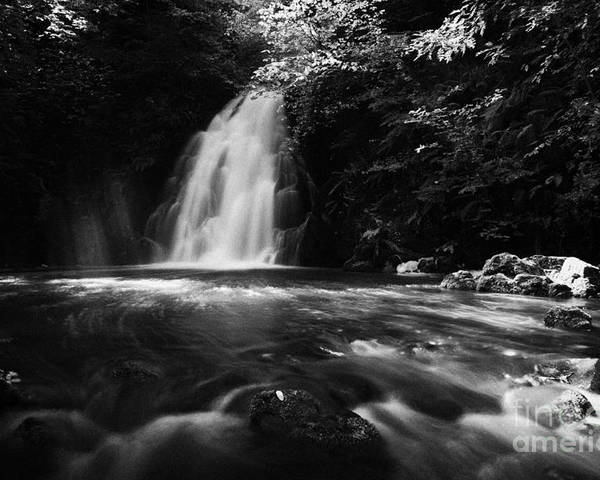 Glenoe Poster featuring the photograph Gleno Or Glenoe Waterfall County Antrim by Joe Fox