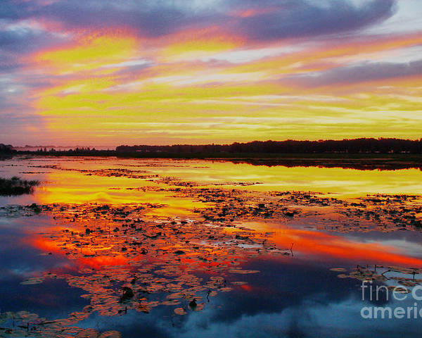 Sunrise Poster featuring the photograph Glowing Skies Over Crews Lake by Barbara Bowen