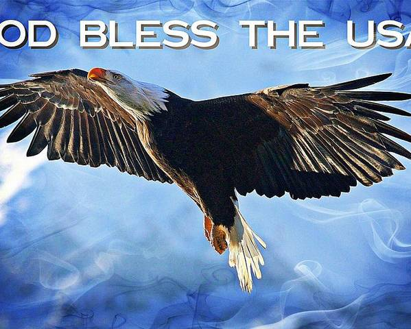 Bald Eagle Poster featuring the digital art God Bless The Usa by Carrie OBrien Sibley