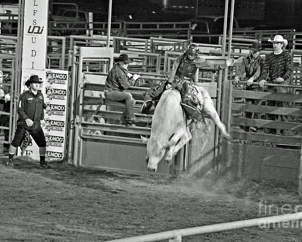 Bull Riding Poster featuring the photograph Going For 8 by Shawn Naranjo