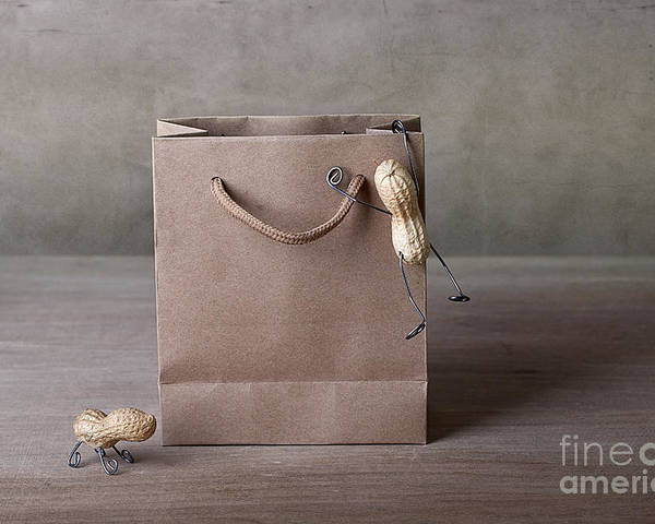 Peanut Poster featuring the photograph Going Shopping 03 by Nailia Schwarz