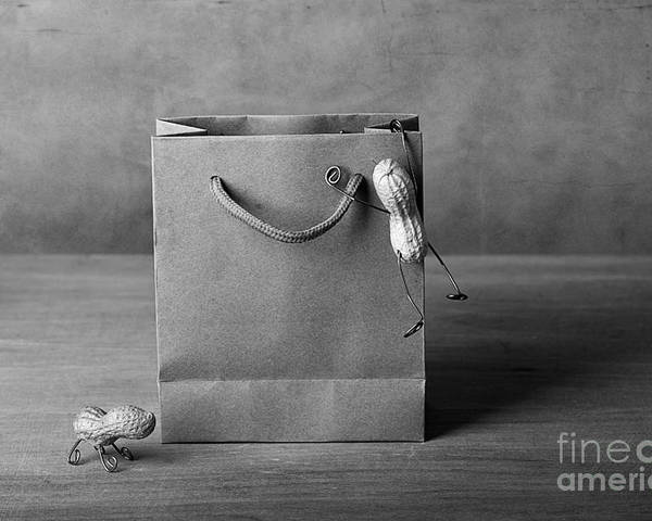 Peanut Poster featuring the photograph Going Shopping 04 by Nailia Schwarz