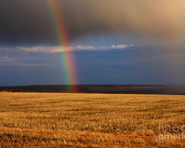 Rain Poster featuring the photograph Gold At The End Of The Rainbow by James Anderson