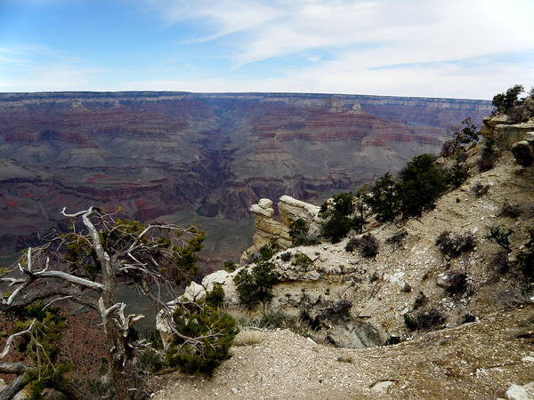 Nature Poster featuring the photograph Grand Canyon 2 by Tanya Searcy