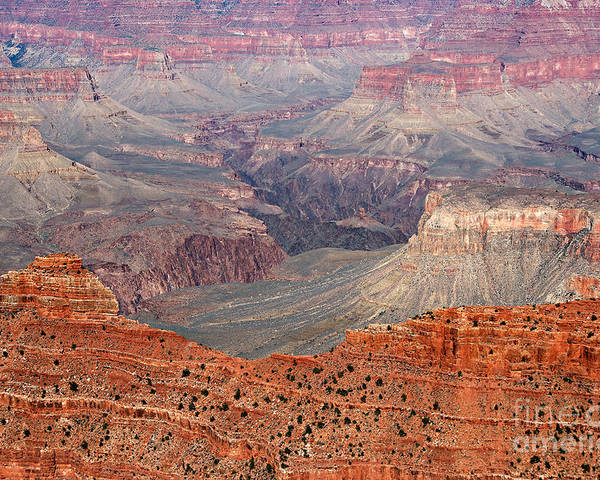 Grand Canyon Poster featuring the photograph Grand Canyon Crimson Ridge by Michael Kirsh