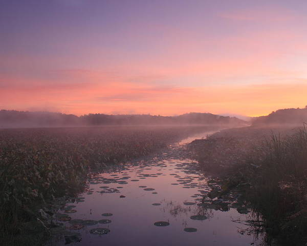 Concord Poster featuring the photograph Great Meadows National Wildlife Refuge Dawn by John Burk