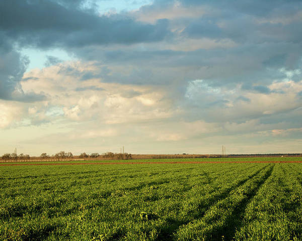 Horizontal Poster featuring the photograph Green Field With Clouds by Topher Simon photography