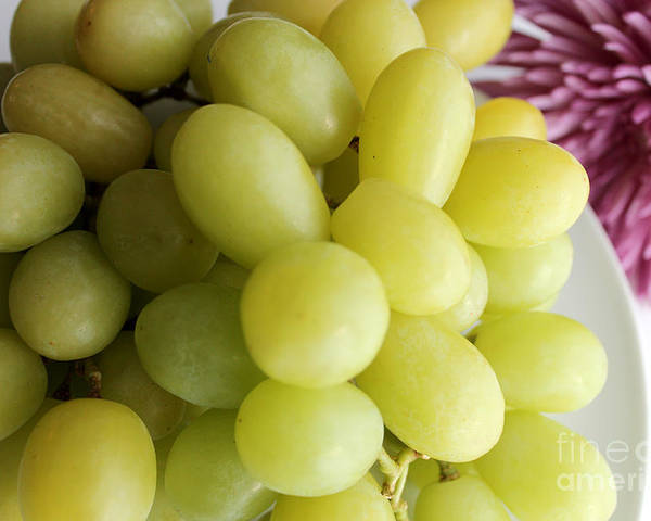 Green Grapes Poster featuring the photograph Green Grapes And Purple Mum by Barbara Griffin