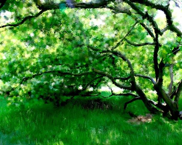 Tree Poster featuring the painting Green Tree by Rita Amirahmadi
