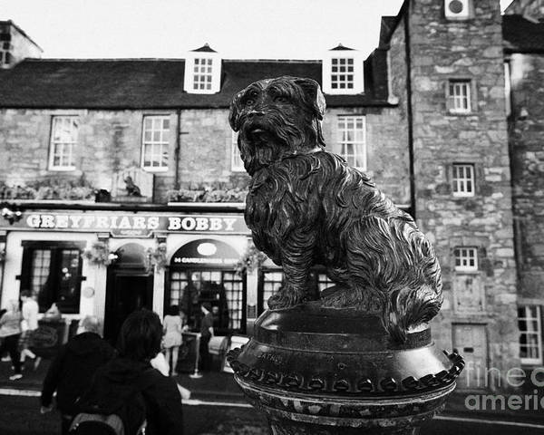 Greyfriars Poster featuring the photograph Greyfriars Bobby Statue In Front Of The Bar Candlemaker Row Edinburgh by Joe Fox