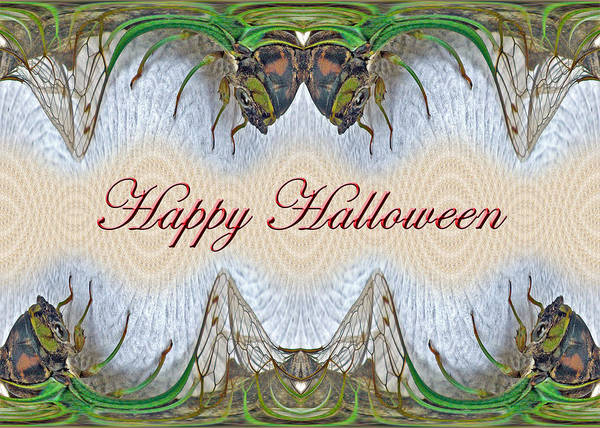 Halloween Poster featuring the photograph Halloween Fantasmagorical Cicada Card by Mother Nature