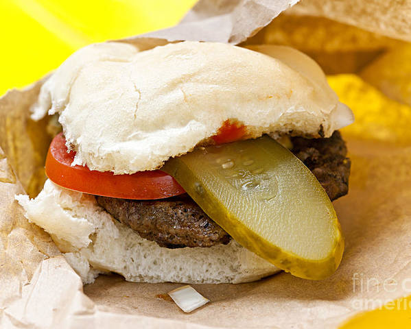 Hamburger Poster featuring the photograph Hamburger With Pickle And Tomato by Elena Elisseeva
