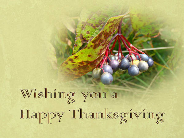 Thanksgiving Poster featuring the photograph Happy Thanksgiving Greeting Card - Autumn Viburnum Berries by Mother Nature