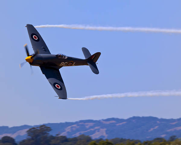 Hawker Sea Fury Poster featuring the photograph Hawker Sea Fury by Garry Gay