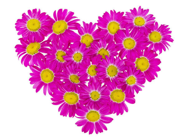 Daisies Poster featuring the photograph Heart From Pink Daisies by Aleksandr Volkov