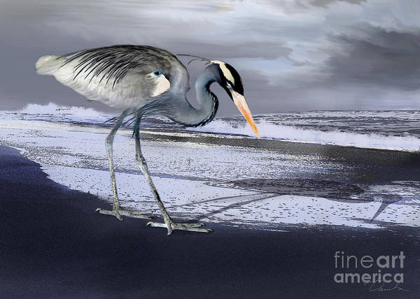 Heron Poster featuring the photograph Heron Taking His Afternoon Beach Walk by Danuta Bennett