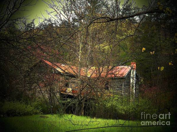 Spring Poster featuring the photograph Hidden House In Spring by Joyce Kimble Smith