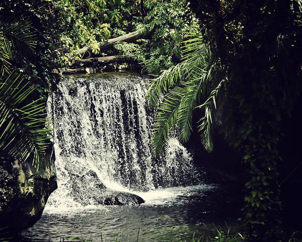 Waterfall Poster featuring the photograph Hidden Waterfall by Karen Cooper