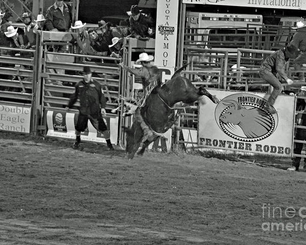 Bull Riding Poster featuring the photograph Hold On For 8 by Shawn Naranjo