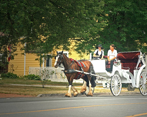 Horse & Carriage Poster featuring the photograph Horse And Carriage by Cyryn Fyrcyd